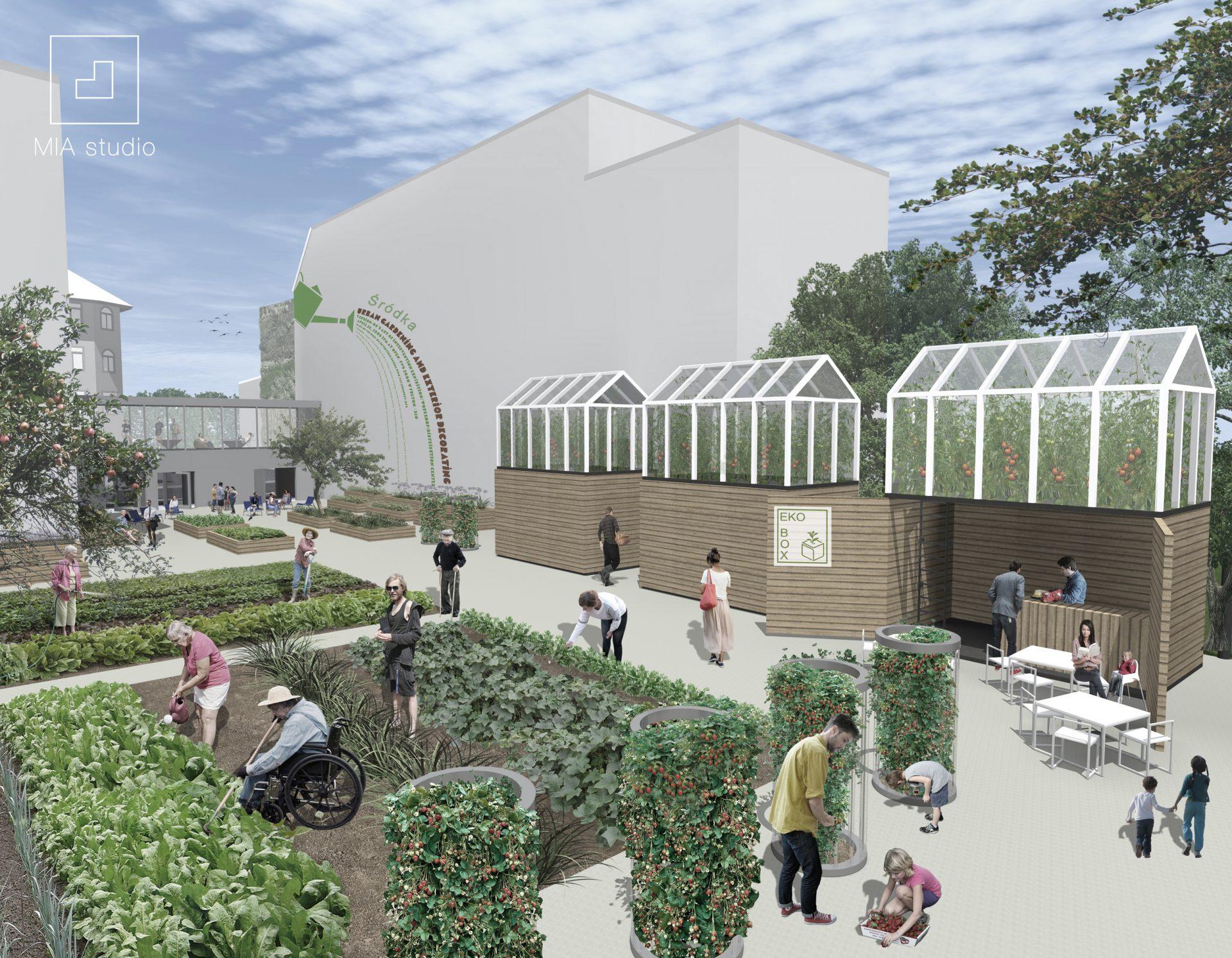 urban gardening miejskie ogrodnictwo