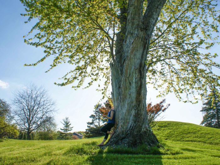 wiosenne zasady architekta krajobrazu
