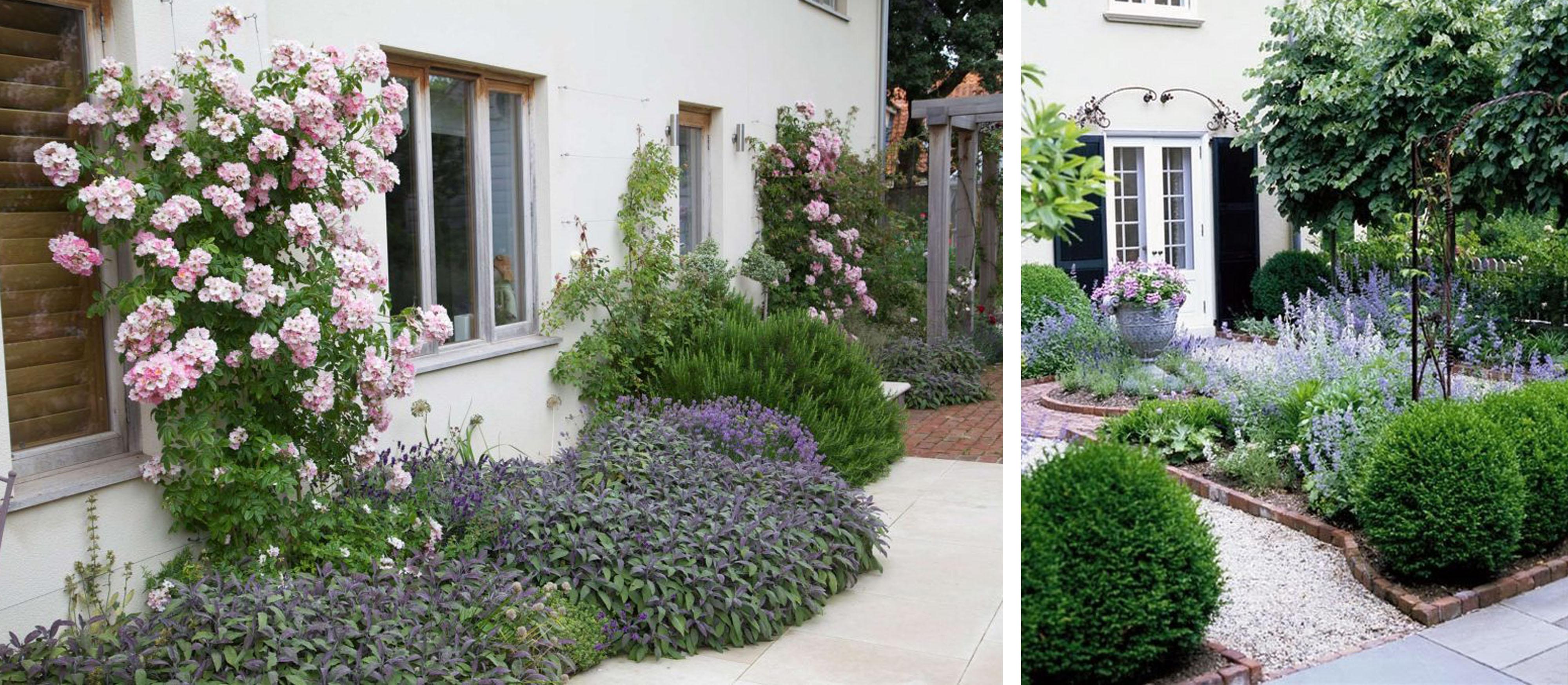 Pomysł Na Ogród Przed Domem Mia Studio Mia Studio