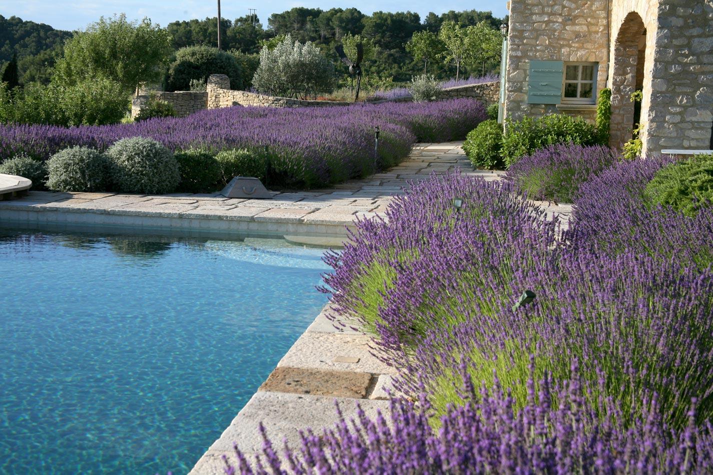 ogród w stylu prowansalskim